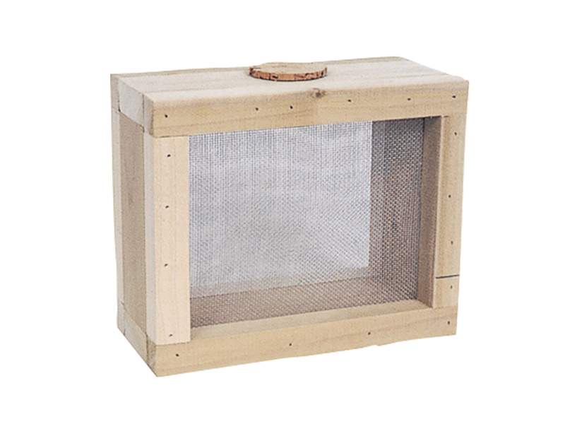 Children's bug keeper has screen sides for ventilation